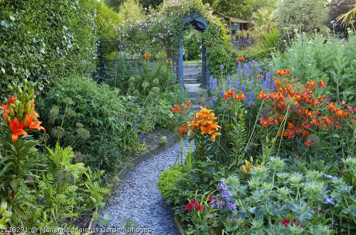 Alstroemeria aurantiaca 'Orange King', Lilium 'Brunello', aconitum, allium seedheads, erngium, rose on arch, slate chippings path