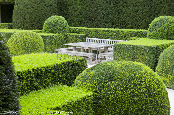 Wooden table and benches in box hedge enclosure, yew hedge, garden 'room'