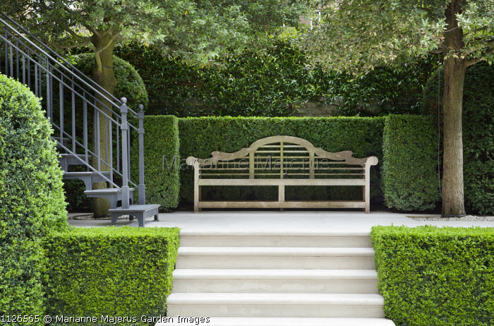 Wooden Lutyens bench on patio flanked by Quercus ilex