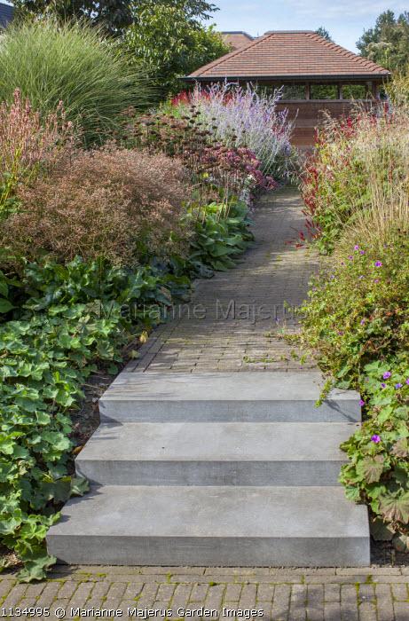 View to garden house, Limonium latifolium, Miscanthus sinensis 'Morning Light, Alchemilla mollis, phlomis seedheads, Geranium 'Dilys', concrete steps