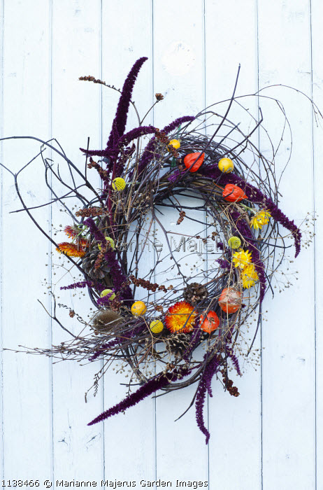 Christmas wreath decoration on white door, twigs, Helichrysum monstrosum, Physalis alkekengis