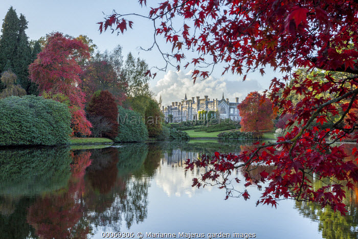 View across lake to Sheffield Park House, reflections, Acer palmatum, Nyssa sylvatica