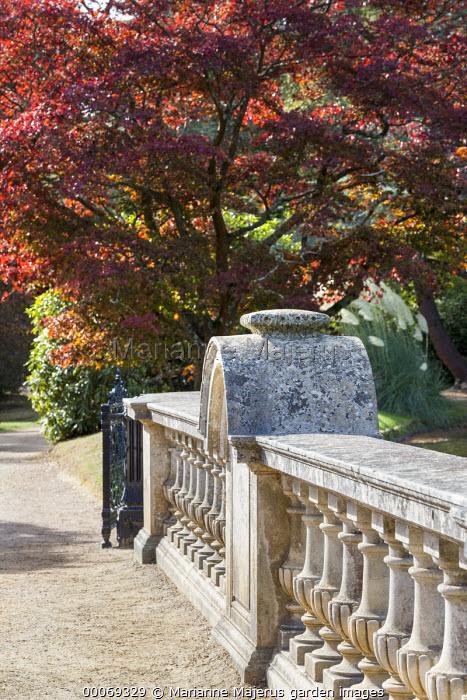 Bridge with stone balustrade, Acer palmatum