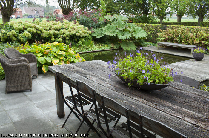 Rustic wooden table and chairs on patio overlooking formal pond, hosta, Hydrangea arborescens 'Annabelle', Gunnera manicata, eupatorium, bench