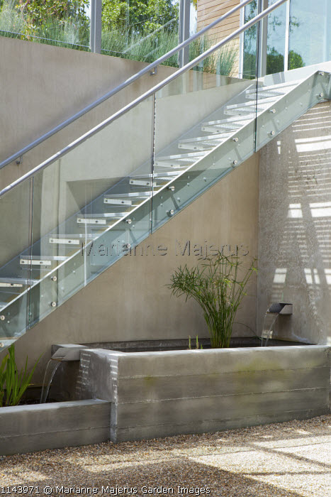Basement courtyard with concrete raised pond and fountain, Cyperus papyrus, contemporary glass and metal staircase