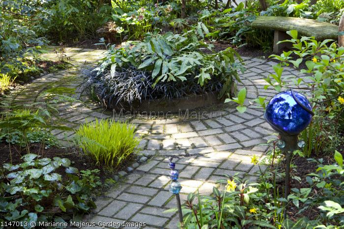 Circular brick paving around raised bed, Ophiopogon planiscapus 'Nigrescens', blue ball
