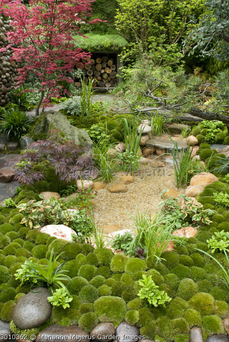 Japanese garden, moss, pool, rocks, log storage, acer