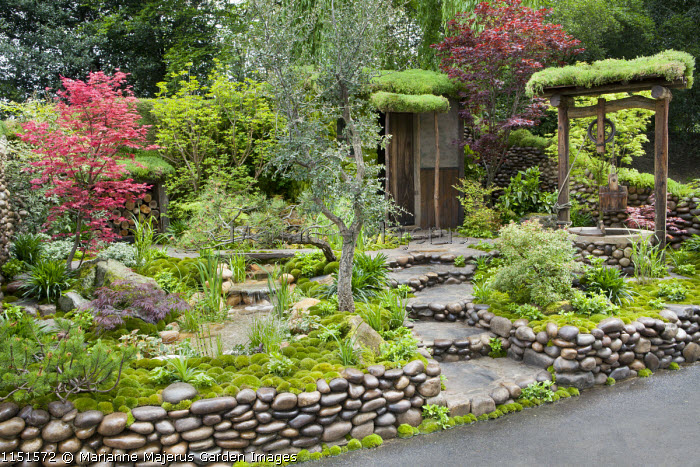 Japanese garden, pebble-edged steps and walls, moss-covered shed, well, pool and waterfall, acer, moss mulch
