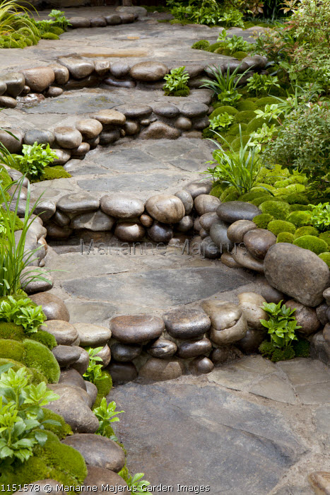 Pebble-edged steps in Japanese moss garden