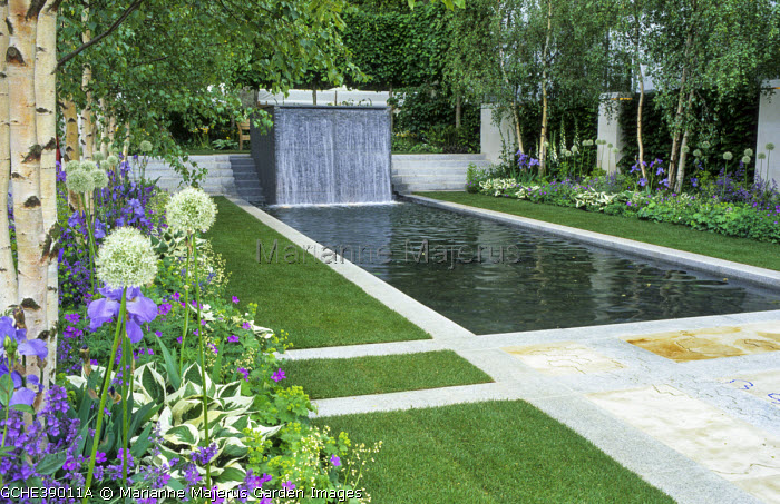 Formal rectangular pool and fountain edged with stone paving, alliums, geraniums and hostas under birch trees