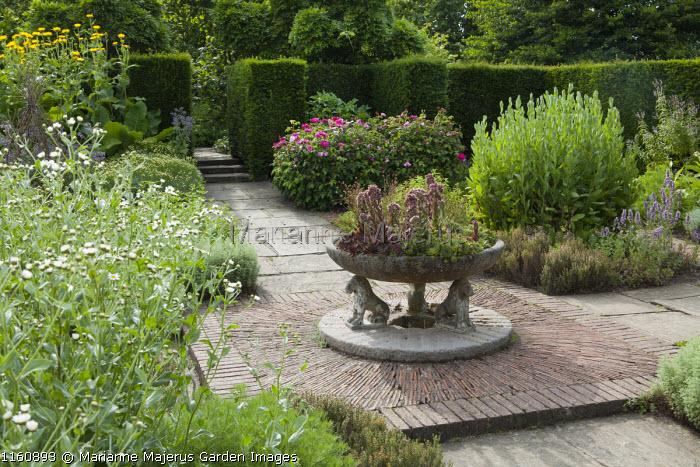 Herb garden, brick paving, sempervivums in large stone trough, roses