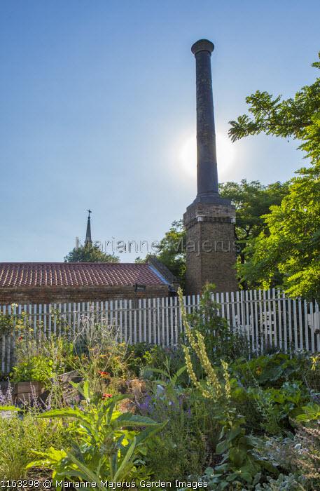 Brunel museum, potager, artichokes, verbascum, Verbena bonariensis