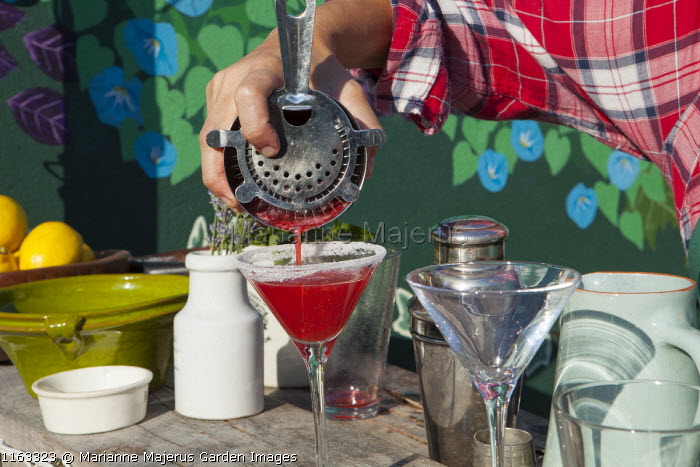 Raspberry mint martini, cocktail shaker and glass