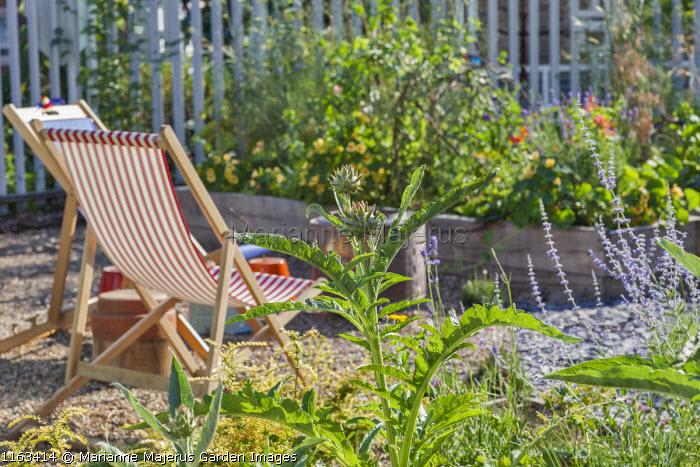 Deckchairs, Cynara cardunculus, perovskia, nasturtiums