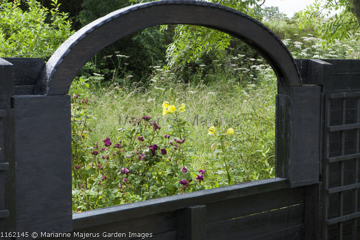 View through wooden fence framing meadow beyond