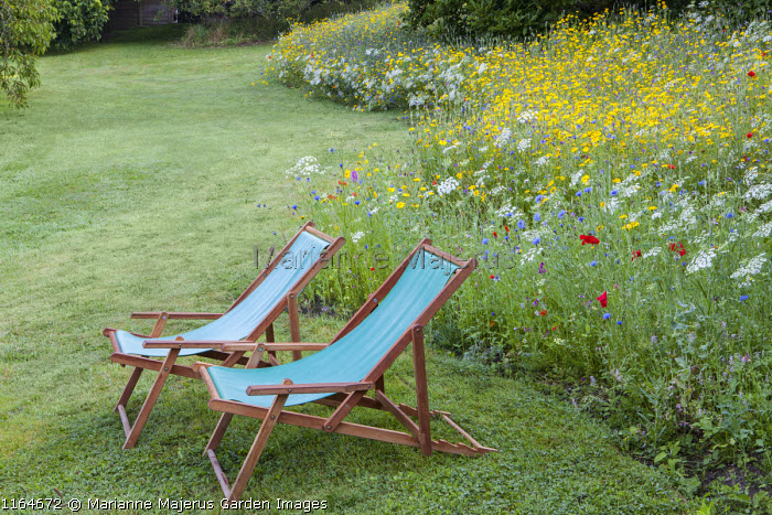 Deckchairs on lawn, wildflower meadow with Queen Anne's lace, Corn marigolds, Field poppies, Corn cockles, Cornflowers, Pictorial Meadows, Candy Annual Mix