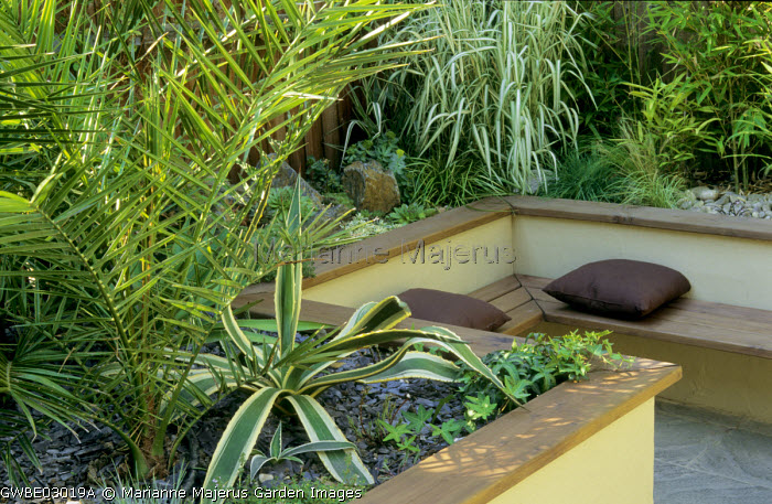 Raised beds with Phoenix canariensis, agaves, grasses, bamboos, built-in bench with cushions