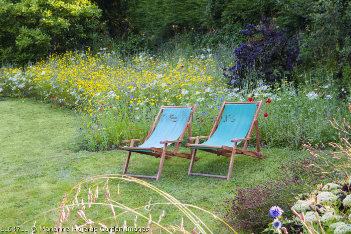 Deckchairs on lawn by wildflower meadow with Queen Anne's lace, Corn marigolds, Field poppies, Corn cockles, Cornflowers, Pictorial Meadows, Candy Annual Mix