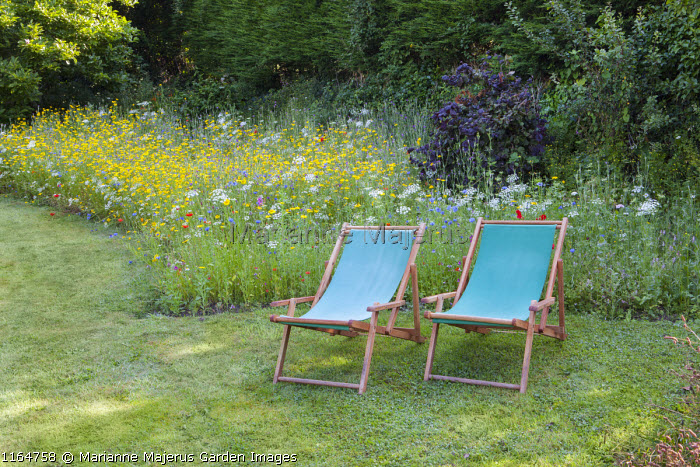Deckchairs in lawn, wildflower meadow with Queen Anne's lace, Corn marigolds, Field poppies, Corn cockles, Cornflowers, view to bench, Pictorial Meadows, Candy Annual Mix
