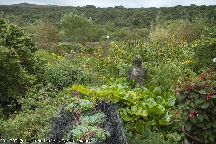 Echeveria and Ophiopogon planiscapus 'Nigrescens' in stone trough, stone bust, fuchsia in container, bergenia leaves, mirrored obelisk in bog garden, inula