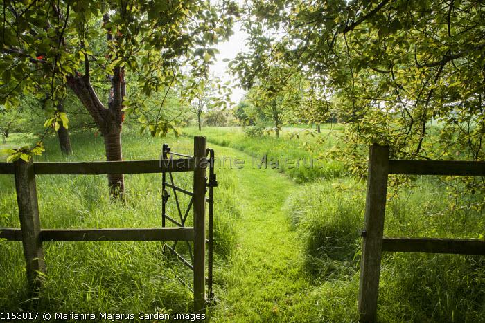 Gate, mown grass path through long grass meadow