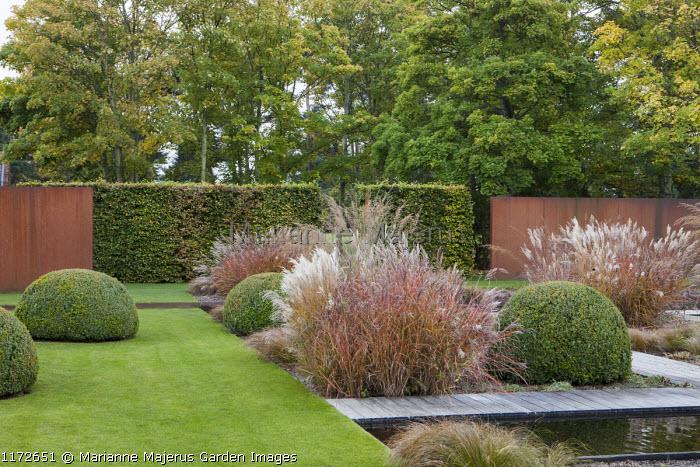 Formal water garden, Miscanthus sinensis 'Ferner Osten', molinia, clipped box domes in lawn, Cor-Ten steel panels