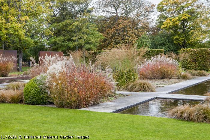 Formal water garden, Miscanthus sinensis 'Ferner Osten', Molinia caerulea subsp. arundinacea 'Transparent'