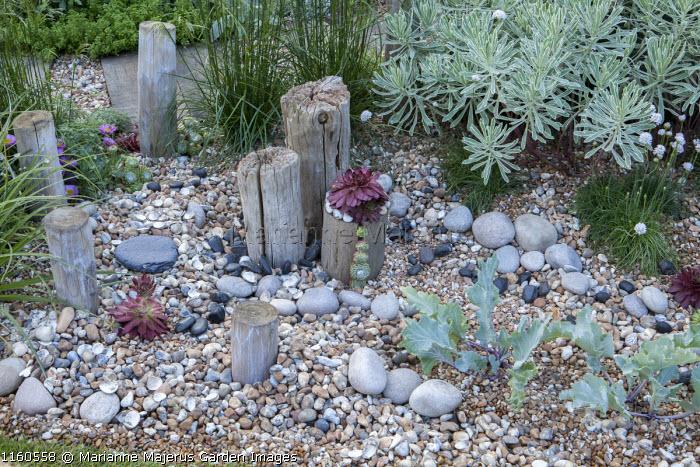 Wooden posts, pebble mulch, sempervivums
