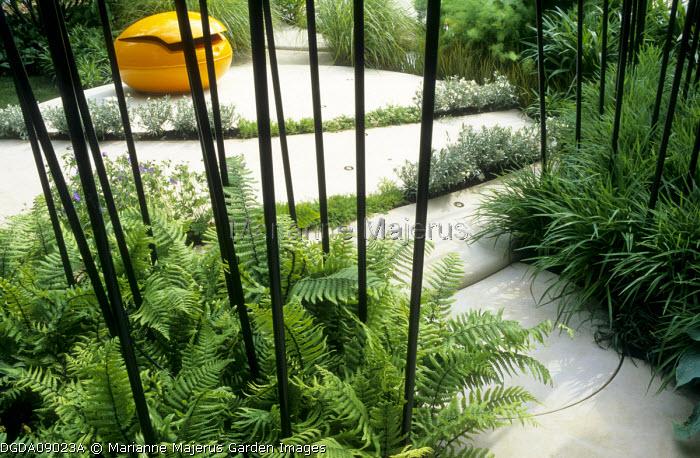 Contemporary patio, ferns
