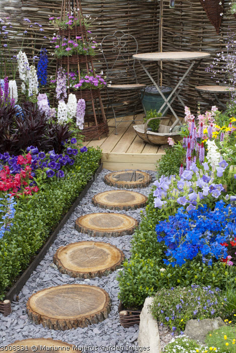 Colourful cottage garden, Lobelia cardinalis 'Queen Victoria', Penstemon 'Tubular Bells Red', Primula vialii, Delphinium grandiflorum 'Summer Nights' (Summer Series), campanula, table and chairs on decking, cut log stepping stone path, clipped box edging, slate chippings