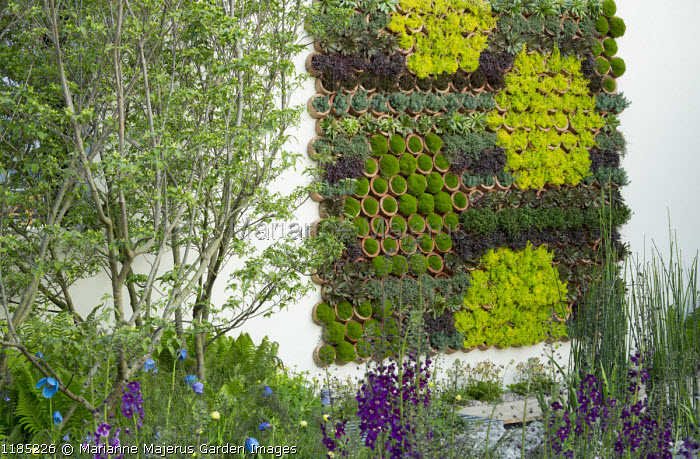 Living green vertical wall