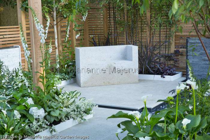 Contemporary stone bench on stone patio, rill, Digitalis purpurea f. albiflora, Zantedeschia aethiopica 'Crowborough'