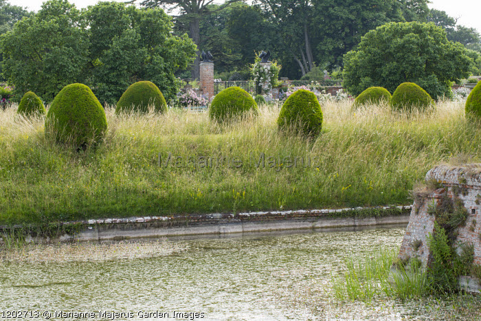 Yew topiary, long grass by moat
