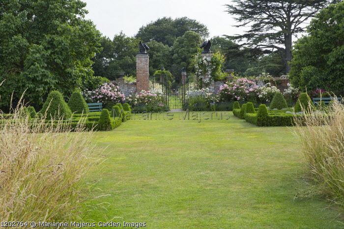 View across lawn to wrought-iron gates, box parterre, Rosa 'Félicité Perpétue', 'Felicia', 'Prosperity' and 'Buff Beauty'