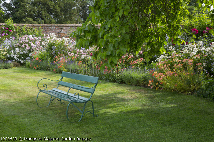 Green painted bench under tree on lawn, Alstroemeria ligtu hybrids and rose border edged with lavender