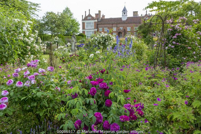 Rose garden including Rosa 'Président de Sèze', 'Marchesa Boccella' and 'Madame Plantier', geraniums, delphiniums, view to Helmingham Hall, metal obelisks in border