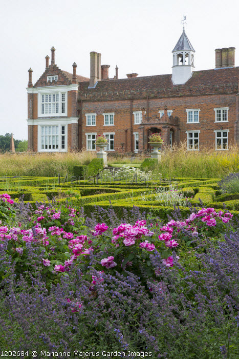 View across box parterre to Helmingham Hall, Rosa mundi and Nepeta racemosa 'Walker's Low'