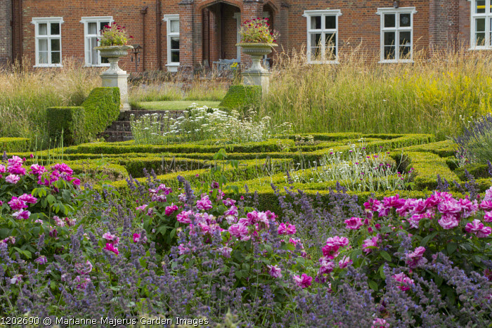 View across rose border and herb parterre to steps flanked with large urns, Rosa mundi and Nepeta racemosa 'Walker's Low'