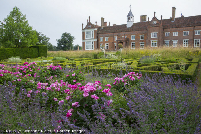 View across rose border and herb parterre to Helmingham Hall, Rosa mundi and Nepeta racemosa 'Walker's Low'