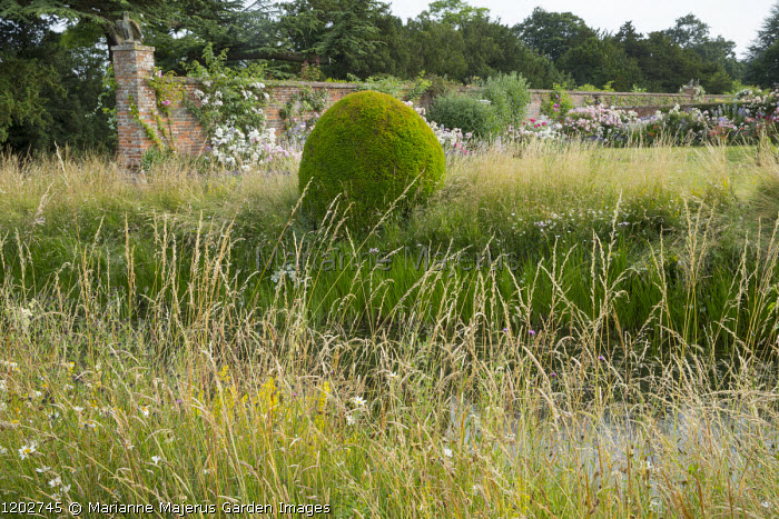 View across moat to walled garden with roses, yew topiary, long grass
