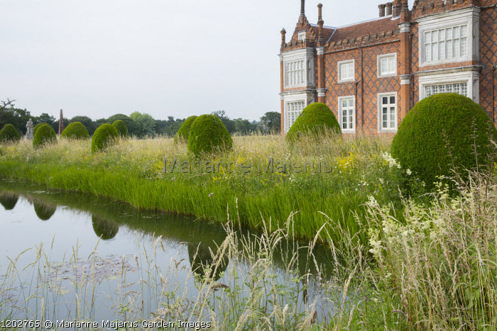 Helmingham Hall, yew topiary, long grass by moat