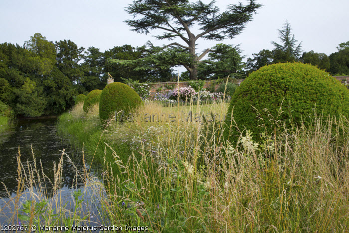Large yew domes in long grass alongside water channel
