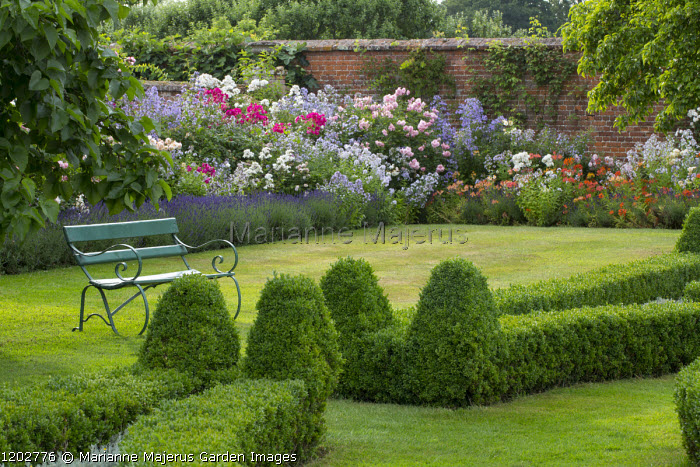 Green painted bench under tree on lawn, alstroemeria, campanula and rose border edged with lavender, brick wall, low clipped box hedge