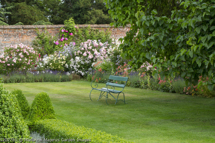 Green painted bench under tree on lawn, alstroemeria and rose border edged with lavender