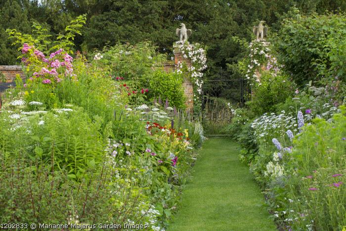 View down grass path to gate posts, double borders, Ammi majus 'Graceland', Leucanthemum x superbum, Helenium 'Moerheim Beauty', Rosa 'Dorothy Perkins' and 'Félicité Perpétue'