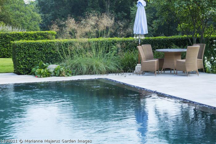 Swimming pool, table and chairs on terrace, Prunus lusitanica hedge, Stipa gigantea