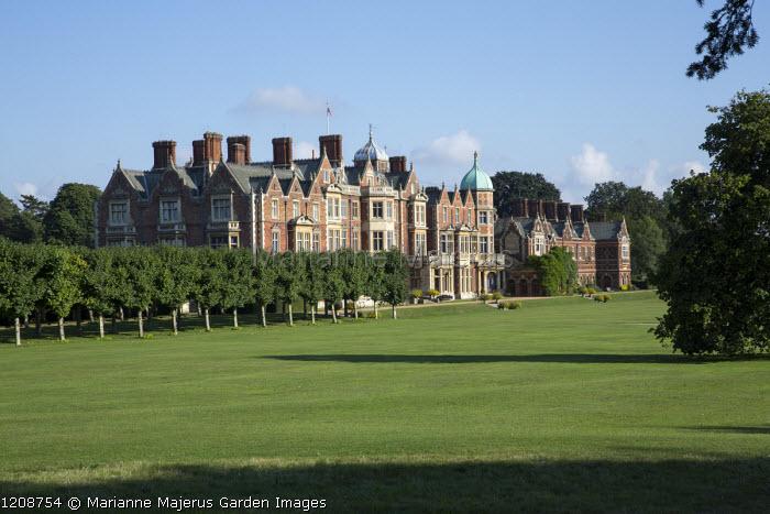 View across park to Sandringham House, avenue of Tilia platyphyllos 'Rubra'