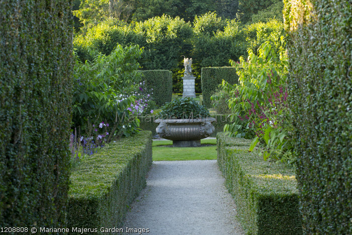 View along path edged with box hedges toward large urn planted with Virburnum davidii