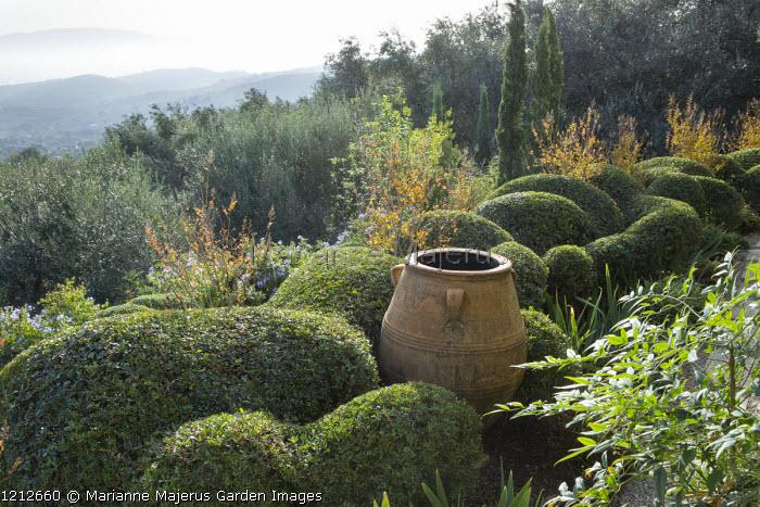 Large terracotta urn in cloud-pruned Pistacia lentiscus, Lagerstroemia indica