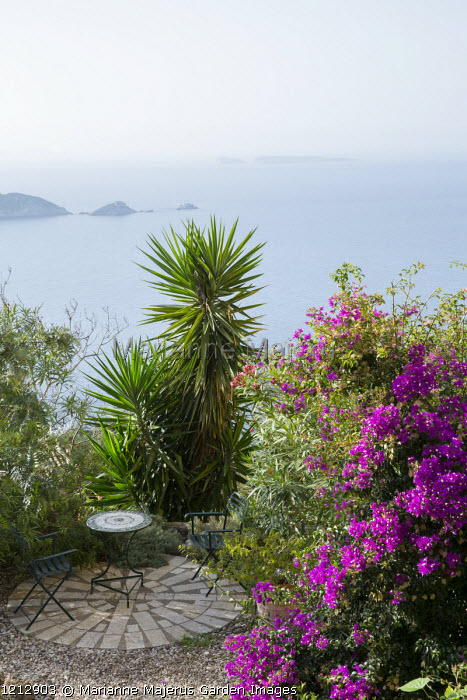 Table and chairs on circular patio overlooking sea, Bougainvillea spectabilis, Yucca aloifolia
